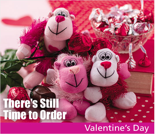 Your one stop holiday essential shop - shop valentines day